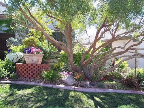 Las Vegas Landscape Design - Las Vegas Landscaping Portfolio